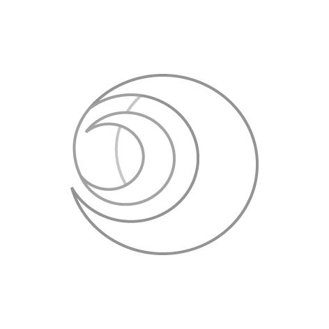 logo_pdf4
