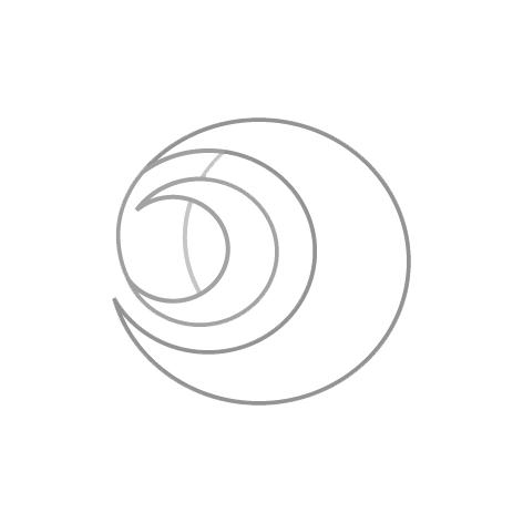 logo_png4