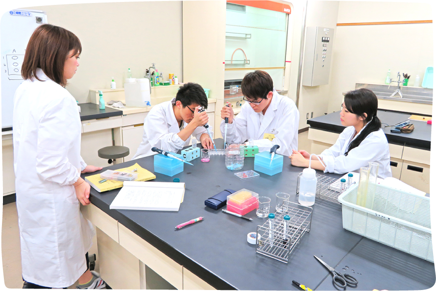 生命化学情報工学科 イメージ